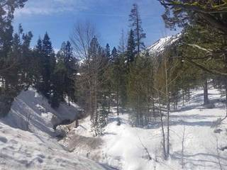 Listing Image 10 for 1432 Mineral Springs Trail, Alpine Meadows, CA 96161-1564