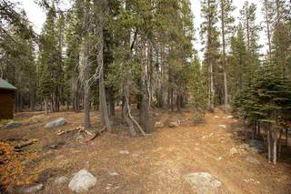 Listing Image 4 for 21106 Donner Pass Road, Soda Springs, CA 95728