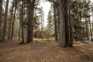 Listing Image 7 for 21106 Donner Pass Road, Soda Springs, CA 95728