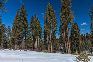 Listing Image 12 for Corner Lot 547 Thistleton Court, Truckee, CA 96161