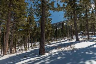 Listing Image 13 for Corner Lot 547 Thistleton Court, Truckee, CA 96161