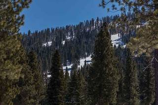 Listing Image 14 for Corner Lot 547 Thistleton Court, Truckee, CA 96161