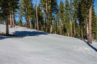 Listing Image 3 for Corner Lot 547 Thistleton Court, Truckee, CA 96161