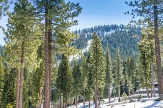 Listing Image 7 for Corner Lot 547 Thistleton Court, Truckee, CA 96161