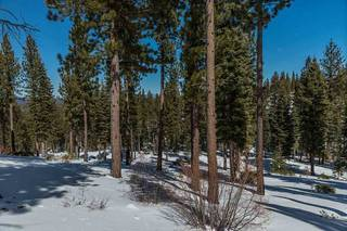 Listing Image 8 for Corner Lot 547 Thistleton Court, Truckee, CA 96161
