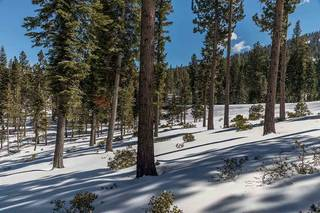 Listing Image 9 for Corner Lot 547 Thistleton Court, Truckee, CA 96161
