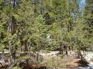 Listing Image 21 for 51682 Tamarack Crescent, Soda Springs, CA 95728-0000