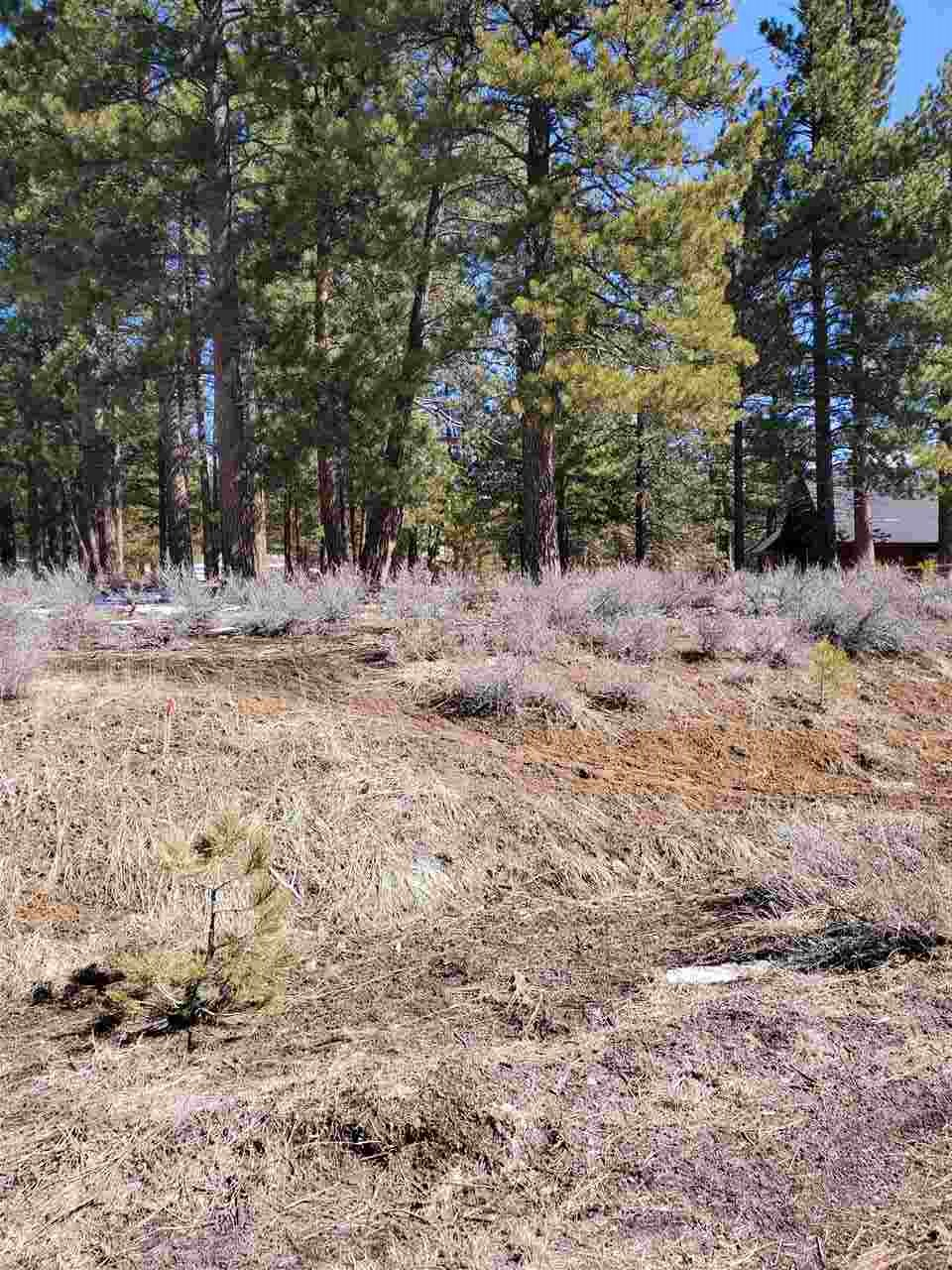 Image for 15627 Sudsbury Circle, Truckee, CA 96161
