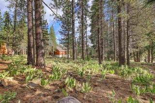 Listing Image 2 for 12673 Northwoods Boulevard, Truckee, CA 96161