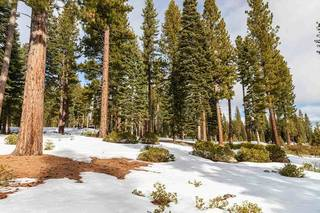 Listing Image 5 for 8372 Thunderbird Circle, Truckee, CA 96161