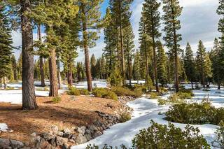 Listing Image 8 for 8372 Thunderbird Circle, Truckee, CA 96161