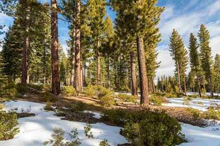Listing Image 9 for 8372 Thunderbird Circle, Truckee, CA 96161