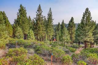 Listing Image 4 for 13952 Alder Creek Road, Truckee, CA 96161