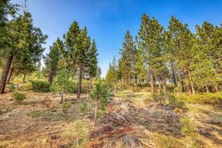 Listing Image 5 for 13952 Alder Creek Road, Truckee, CA 96161