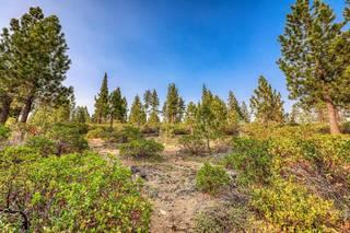 Listing Image 6 for 13952 Alder Creek Road, Truckee, CA 96161