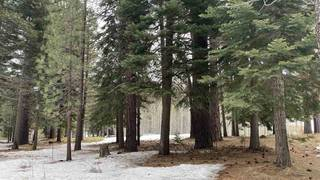 Listing Image 5 for 415 Lodgepole, Truckee, CA 96161