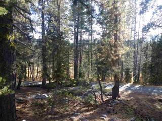 Listing Image 14 for 50474 Conifer Drive, Soda Springs, CA 95728-8