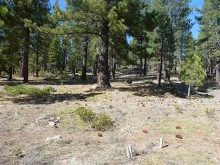 Listing Image 2 for 590 Stewart McKay, Truckee, CA 96161