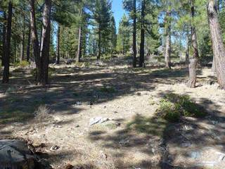 Listing Image 3 for 590 Stewart McKay, Truckee, CA 96161