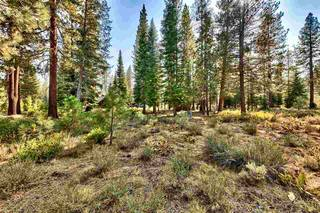 Listing Image 8 for 8485 Lahontan Drive, Truckee, CA 96161-5132