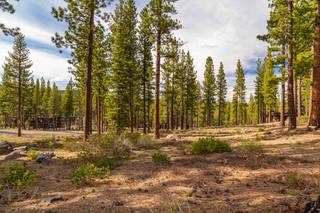 Listing Image 12 for 8207 Ehrman Drive, Truckee, CA 96161