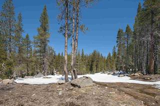 Listing Image 10 for 20954 Donner Pass Road, Soda Springs, CA 95728