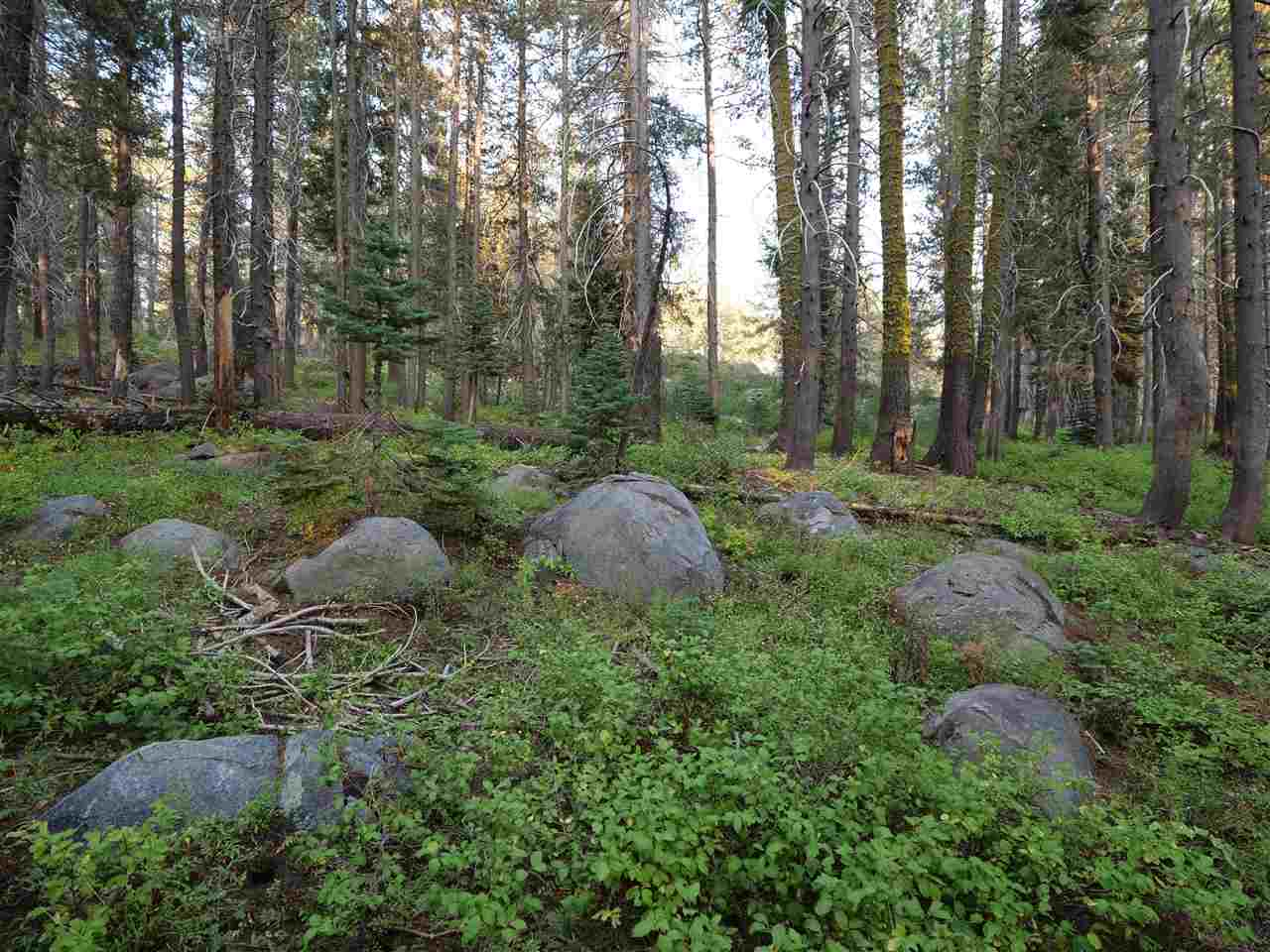 Image for 2 Bunny Hill Road, Soda Springs, CA 95728