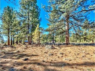 Listing Image 5 for 213 John Keiser, Truckee, CA 96161