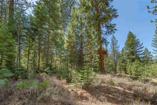 Listing Image 13 for 10336 Palisades Drive, Truckee, CA 96161