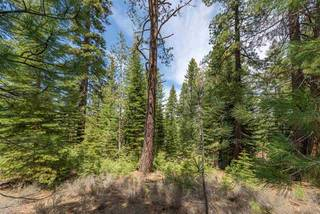 Listing Image 20 for 10336 Palisades Drive, Truckee, CA 96161