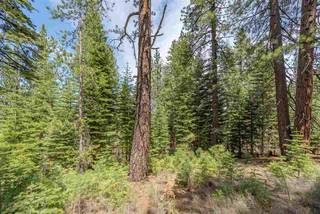 Listing Image 21 for 10336 Palisades Drive, Truckee, CA 96161