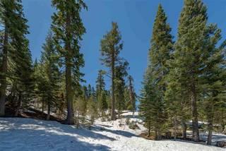 Listing Image 21 for 2201 Scott Peak Place, Alpine Meadows, CA 96146