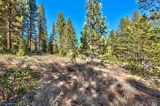 Listing Image 9 for 11850 Bottcher Loop, Truckee, CA 96161-2792