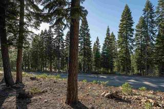 Listing Image 12 for 2620 Mill Site Road, Truckee, CA 96161-3931
