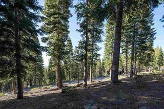 Listing Image 16 for 2620 Mill Site Road, Truckee, CA 96161-3931