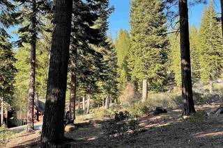 Listing Image 7 for 2620 Mill Site Road, Truckee, CA 96161-3931