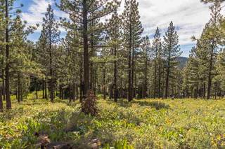 Listing Image 4 for 9619 Ahwahnee Place, Truckee, CA 96161