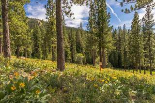 Listing Image 5 for 9619 Ahwahnee Place, Truckee, CA 96161