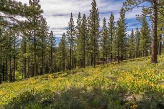 Listing Image 8 for 9619 Ahwahnee Place, Truckee, CA 96161