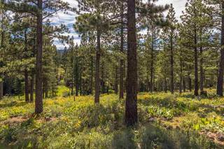 Listing Image 9 for 9619 Ahwahnee Place, Truckee, CA 96161