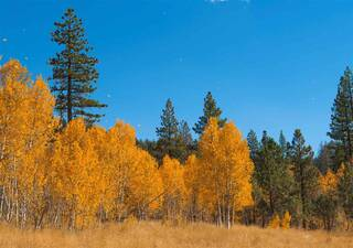 Listing Image 7 for 12885 Zurich Place, Truckee, CA 96161