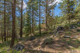 Listing Image 15 for 10275 Donner Lake Road, Truckee, CA 96161
