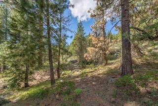 Listing Image 16 for 10275 Donner Lake Road, Truckee, CA 96161