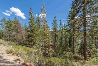 Listing Image 2 for 10275 Donner Lake Road, Truckee, CA 96161