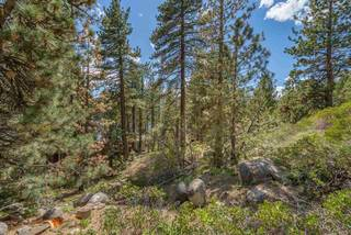 Listing Image 3 for 10275 Donner Lake Road, Truckee, CA 96161
