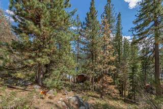 Listing Image 8 for 10275 Donner Lake Road, Truckee, CA 96161