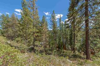 Listing Image 9 for 10275 Donner Lake Road, Truckee, CA 96161