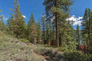 Listing Image 10 for 10275 Donner Lake Road, Truckee, CA 96161