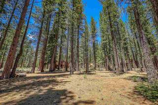 Listing Image 12 for 11584 Kelley Drive, Truckee, CA 96161