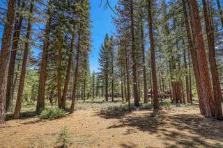 Listing Image 10 for 11584 Kelley Drive, Truckee, CA 96161